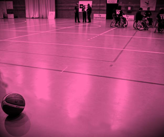 Parasport og handicapidræt i Herlev